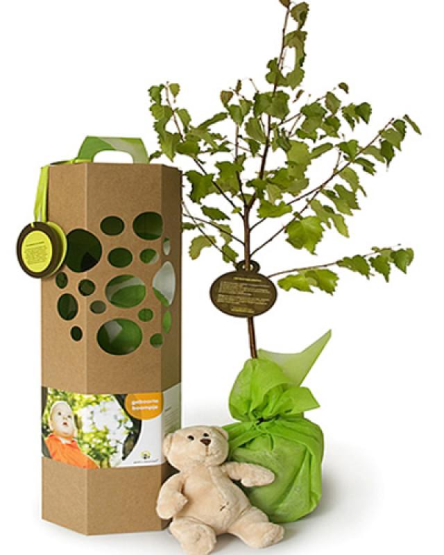 Geef een boompje cadeau for Geef een goed doel cadeau