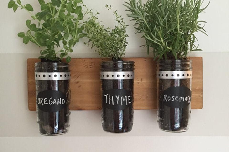 Maak een kruidentuin binnen - met leuke kruidenplantjes