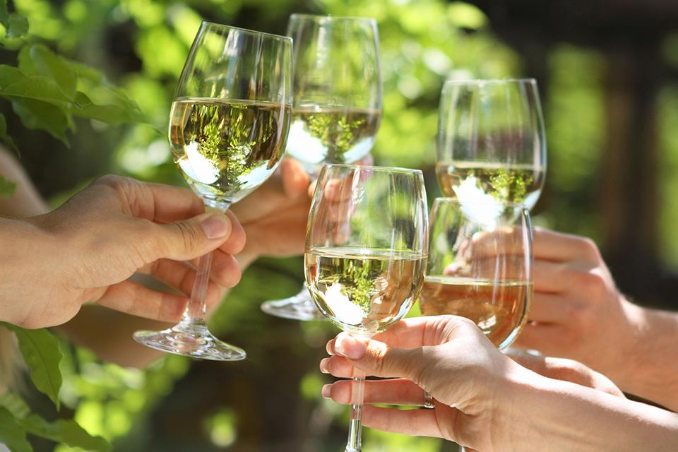 Deze woorden over wijn moet je kennen